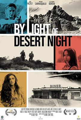 通过沙漠之夜