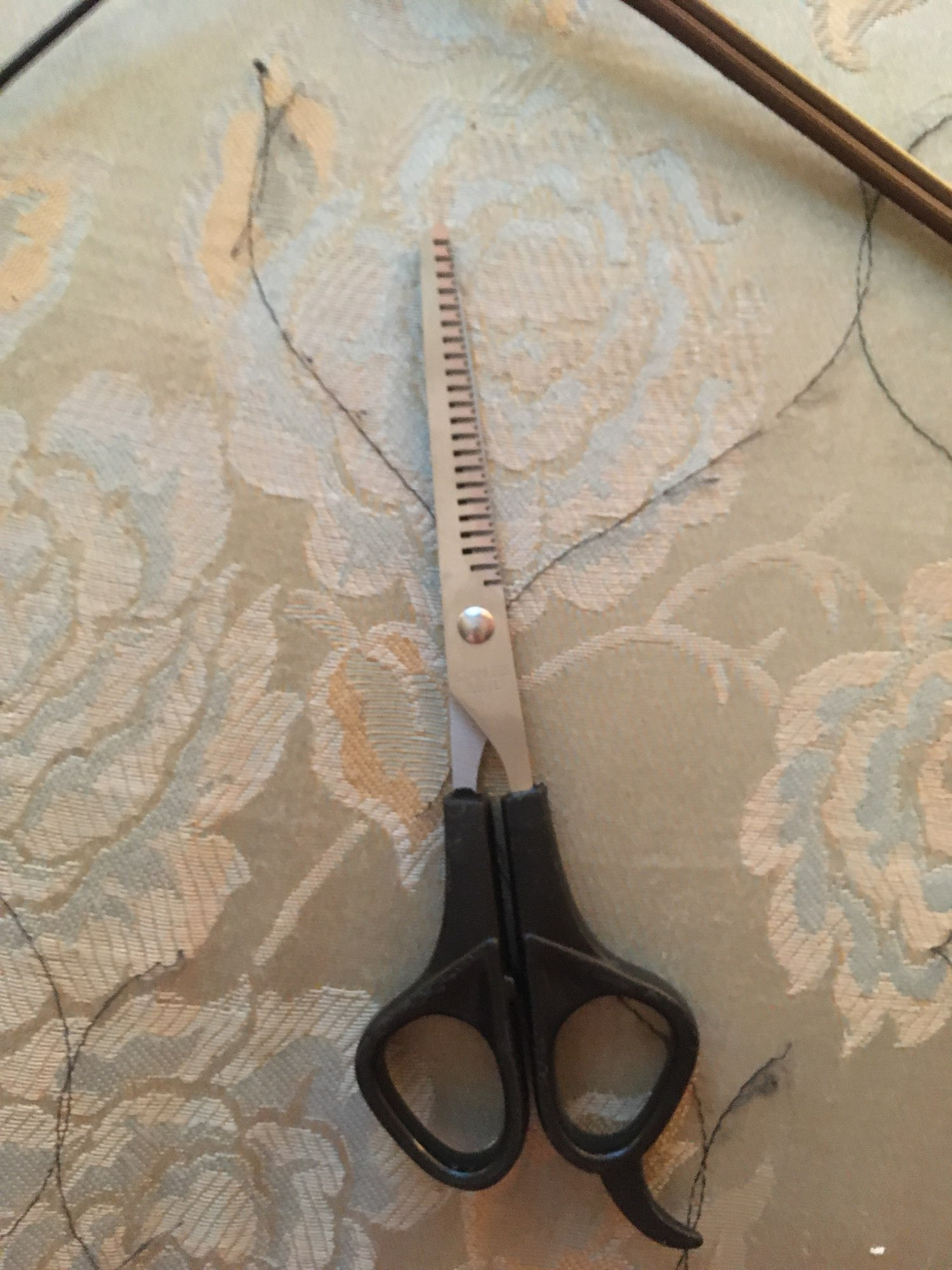 Forbici in acciaio inossidabile capelli