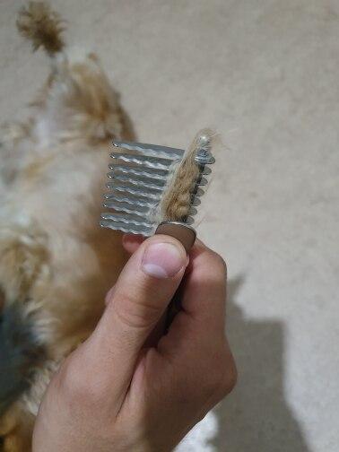 Pentes p/ cães Emaranhados Emaranhado Removedor