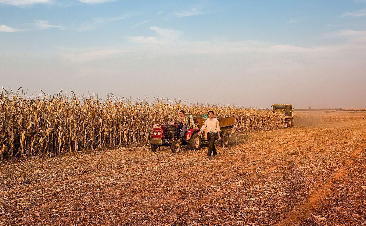 农村养老金或将全面上调,农民朋友有福了?权威解答来了插图(6)