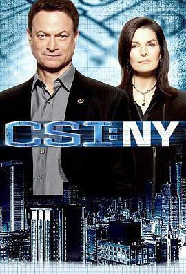 犯罪现场调查:纽约第七季