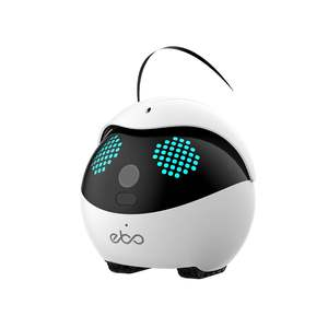 Ebo Catpal The Smart Robot Companion for Your Cat