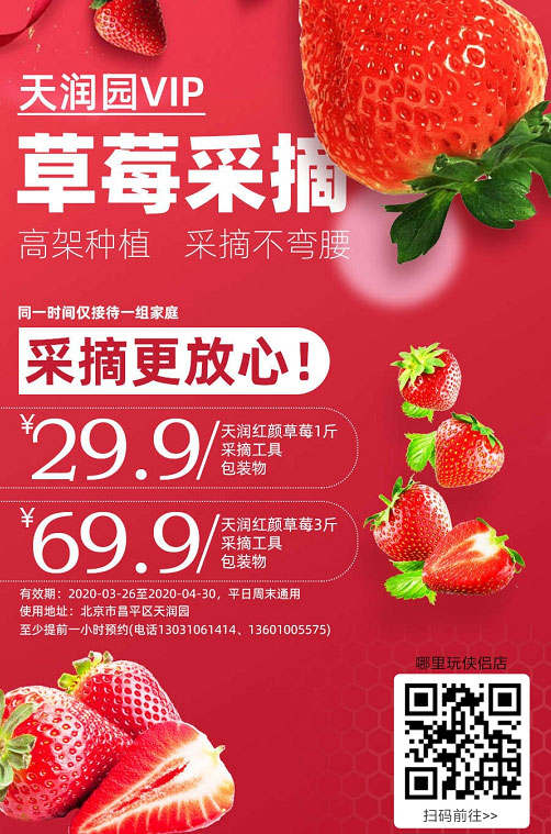 """【北京】29.9元起get家庭""""莓""""好时光!天润园VIP草莓采摘,高架种植,采摘不弯腰,同一时间仅接待一组家庭~让你采摘更放心!"""