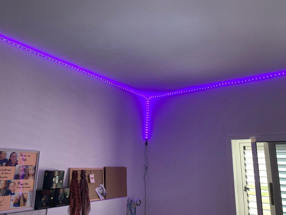 Tiktok Led Remote Lights Programmable Plug In Led Strip Lights For You Aesthetics