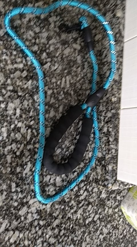Climbing Rope Dog Leash   Carabiner Dog Lead photo review