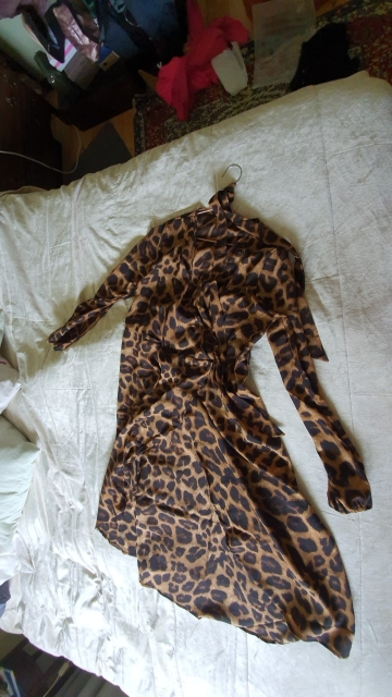 Leopard Dress 2021 Women Chiffon Long Beach Dress Loose Long Sleeve Deep V neck A line Sexy Party Dress Vestidos de fiesta|Dresses|   - AliExpress