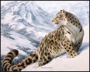 Image 1 - Leopard in the Snow счетный Набор для вышивания крестиком DIY рукоделие ручной работы для вышивания 14 ct Наборы для вышивания крестиком DMC цвет