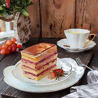 简易版歌剧院蛋糕的做法图解14