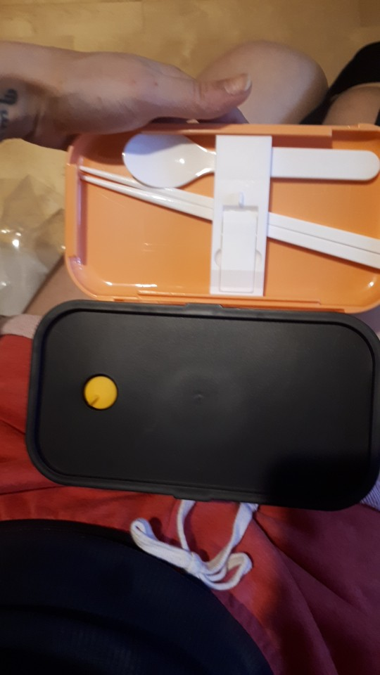 Design Plastic Packing Food Lunch Box photo review