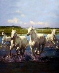 Malerei durch Zahlen weiß pferde, 40x50 cm