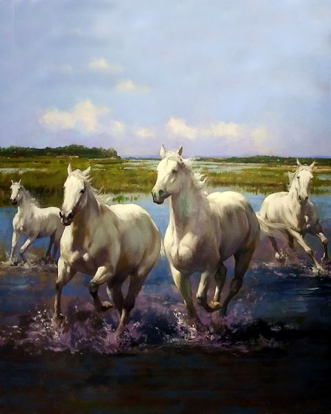 Painting By Numbers White Horses, 40x50 Cm