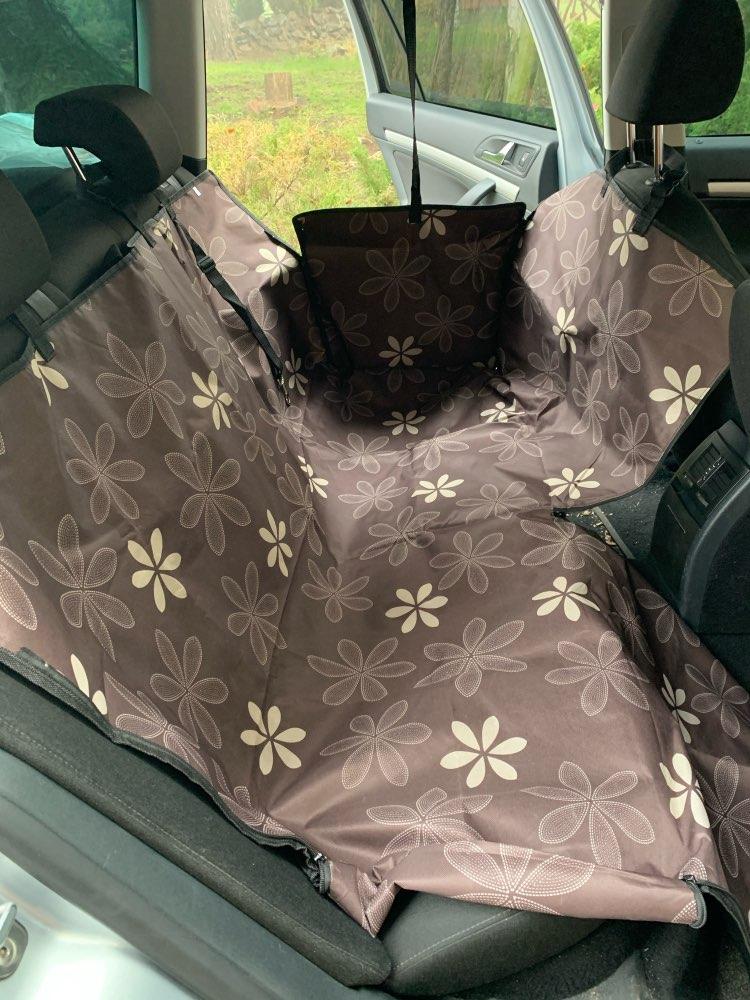 Transportador de cães Transportador Transportador Assento