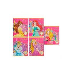 Esercizio Libro Disney Principessa 12 fogli linea di Principessa