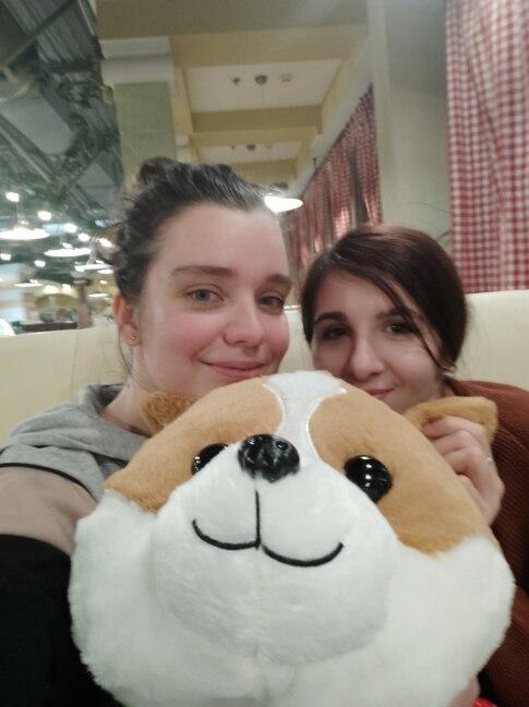60/80/100cm Lovely Corgi Dog Plush Toy Stuffed Soft Animal Cartoon Pillow Gift for Kids Children