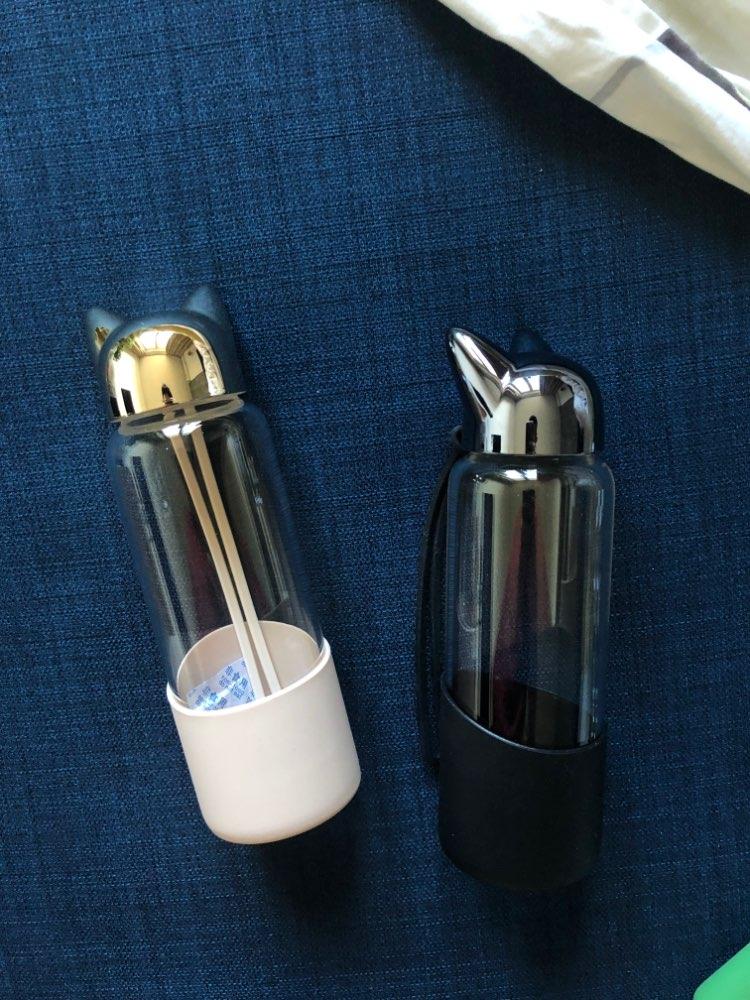 Saintgace Travel Water Bottle Creative Cute Fox Glass Water Bottles Sport Portable Leakproof Drinking cups dropshipping 2020 new Water Bottles    - AliExpress