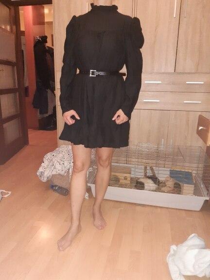 Hot 2019 autumn new fashion women's temperament commuter puff sleeve small high collar natural A word knee Chiffon dress reviews №2 239556
