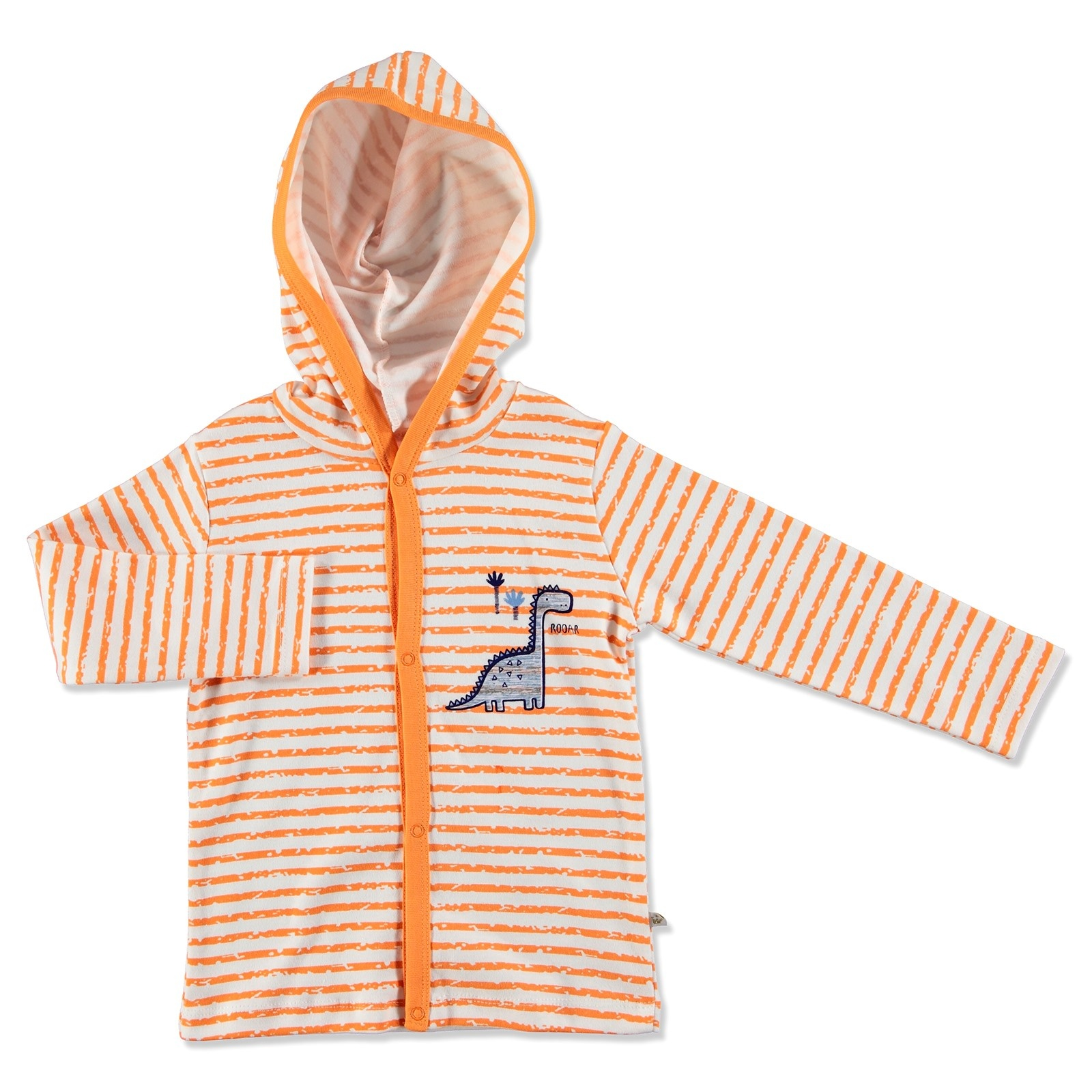 Ebebek For My Baby Summer Boy Dino Cardigan