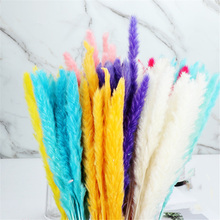 15Pcs/Bunch Bulrush Flower Bunch Bulrush Bouquets Durable for Home Decorations Natural Dried Real Plants Bulrush