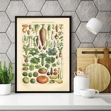 Idioma Francés Larousse impresiones litografía libro placa verduras Vintage cartel rústico cocina cuadro sobre lienzo para pared Decoración