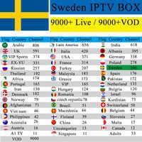 Svezia IPTV 1 Anno free Premium IPTV Box TX6 Android 7.1 2GB 16G usa UK romania Francese spagna canale per adulti M3u Abbonamento VLC