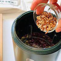 冬日养身必备 | 健康杂粮米糊的做法图解7