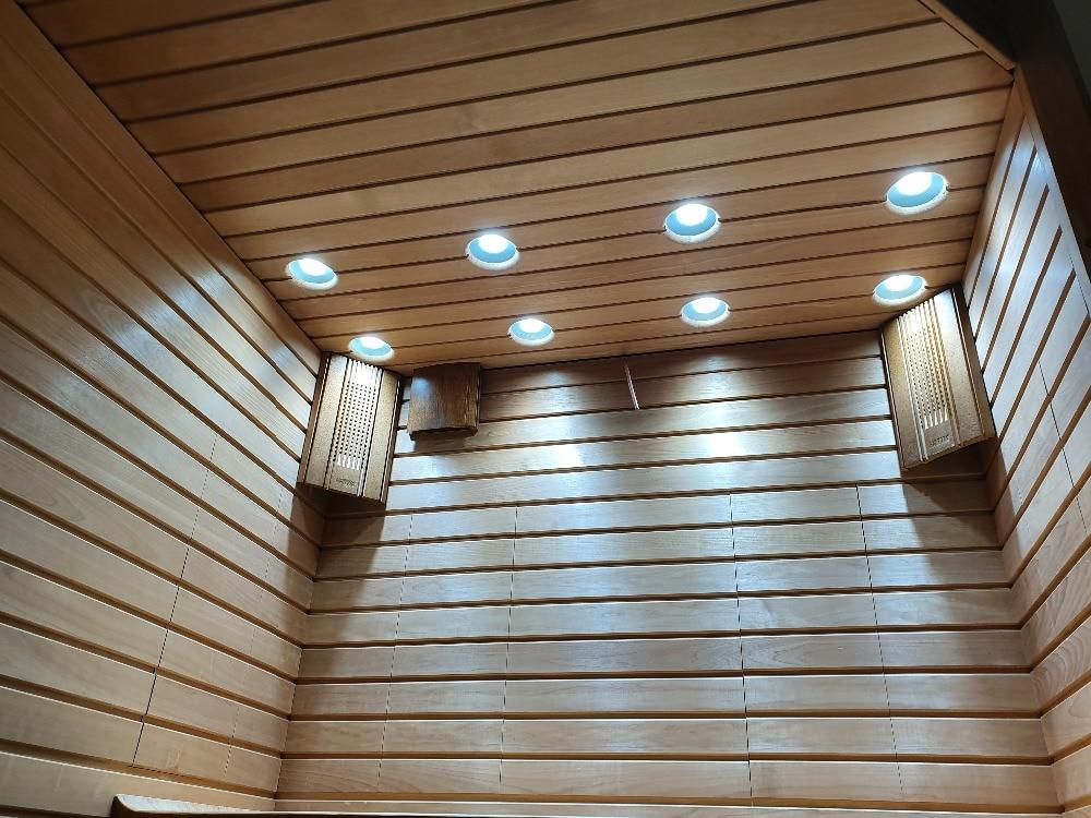 桑拿房100W-COB LED-2