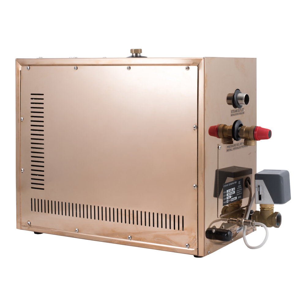 Free Shipping Factory Supply 1 phase 6KW 220-240V Steam Generator For Sale Steam Bathroom