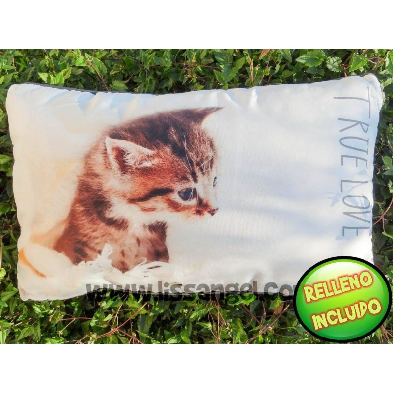 Rectangular Cat Cushion