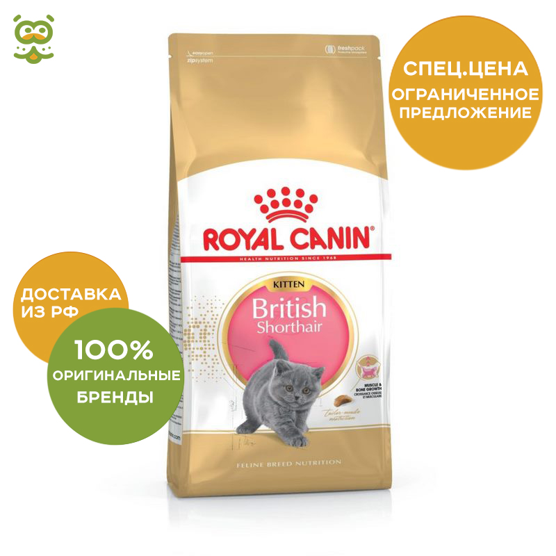 Kittens food Royal Canin British Shorthair Kitten, 10 kg cat wet food royal canin kitten sterilized kitches for kittens pieces in sauce 24 85 g