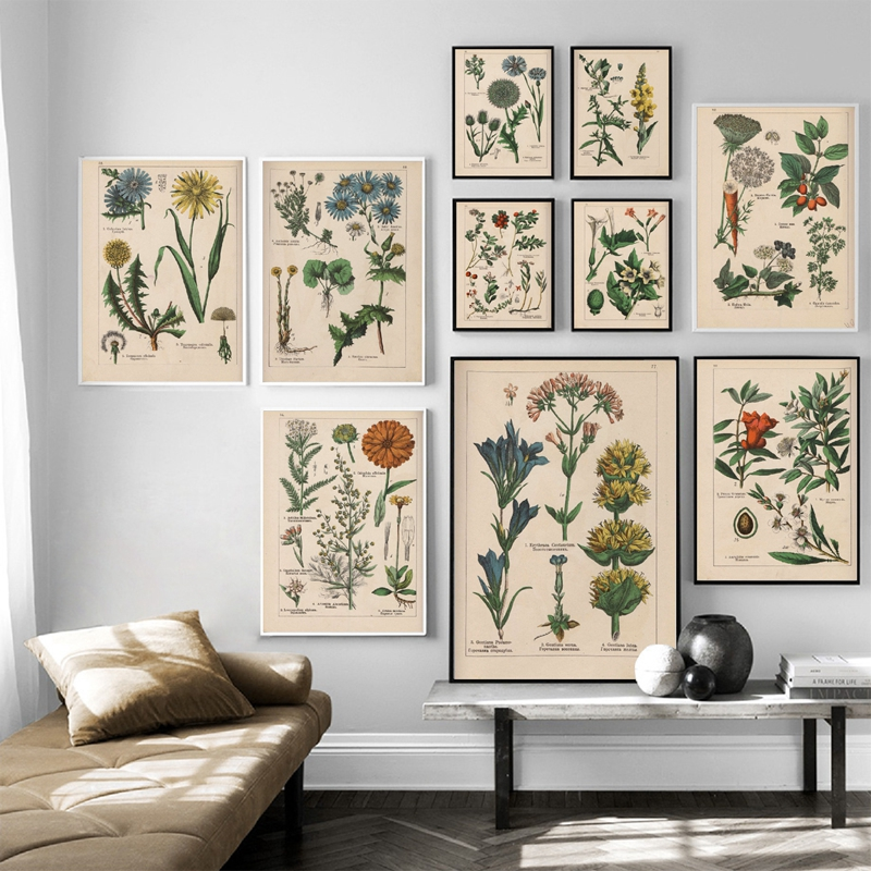 Vintage Botanical Herbs Posters And