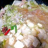 大白菜豆腐炖粉条(东北冬季下饭家常菜)的做法图解9