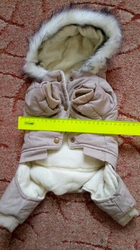 -- algodão roupas estimação