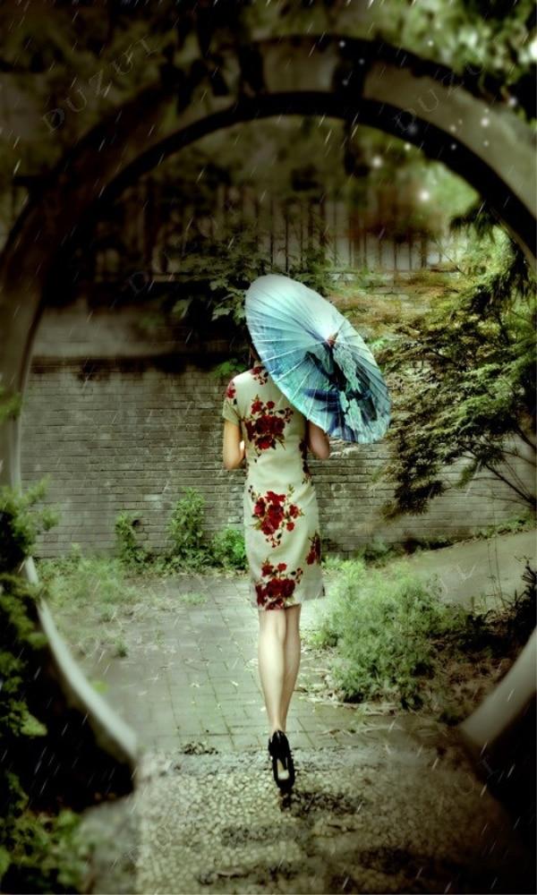 《旗袍》封面图片
