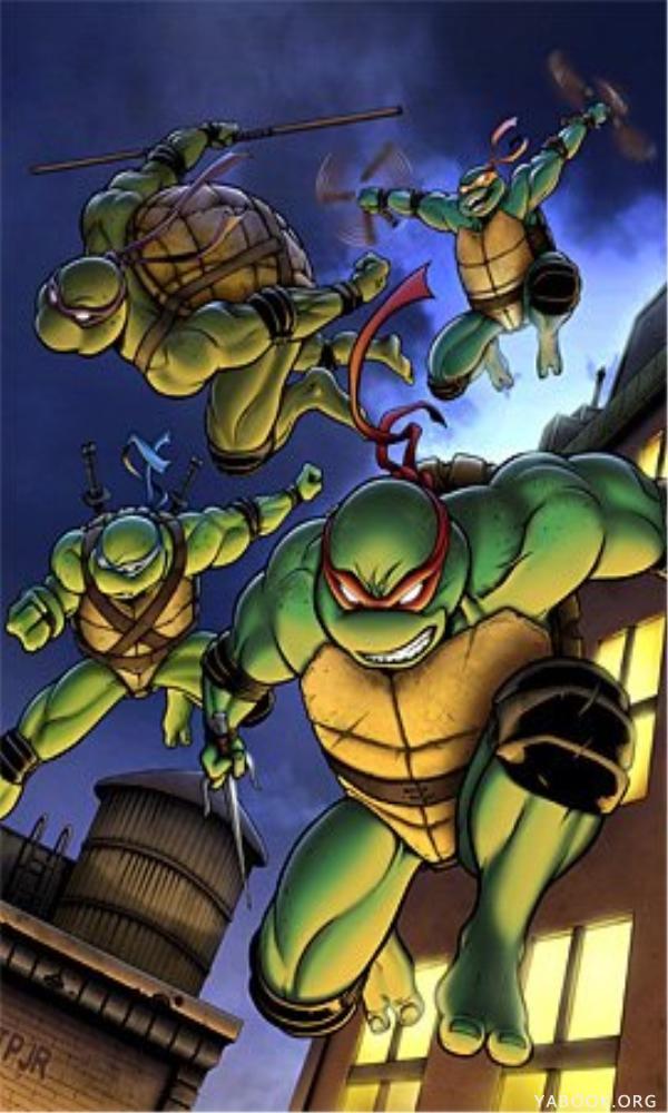《忍者神龟》封面图片