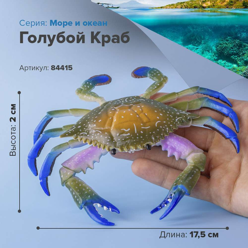 Sea animal figures ocean Figurine Blue Crab children s collectible toy model statuette