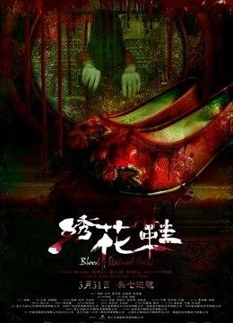绣花鞋的海报