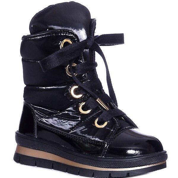 Shoes Jog Dog Sector