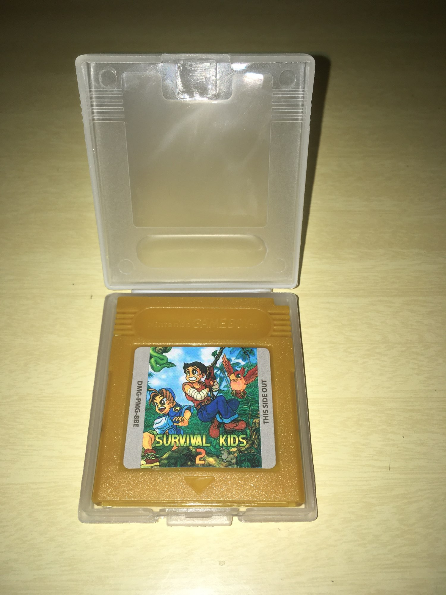 For Nintendo GBC Video Game Cartridge Console Card Survival Kids 2 English Language Version photo review