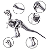DIY Stainless Steel Mental Puzzle Kit 3D Assembly Jigsaw Model Crafts For Home Ornaments Toys Dinosaur Series-Dilophosaurus