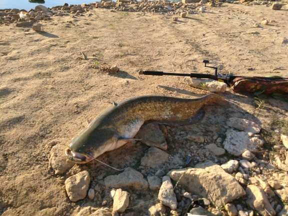 Linhas de pesca Superior Extrema Extrema