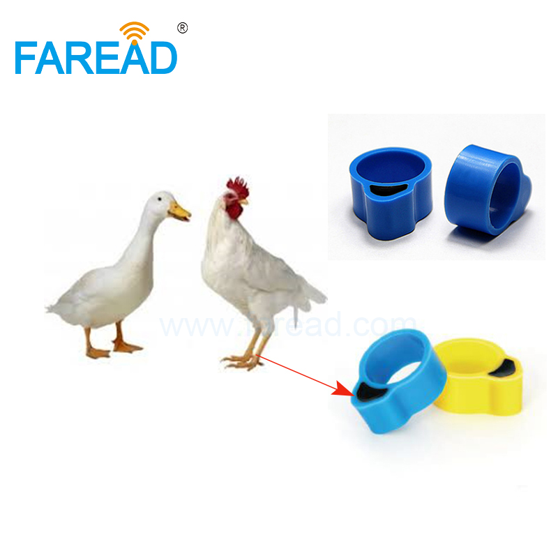 Free Shipping X100pcs EMID 125KHz RFID Chip Tag Chicken Duck Foot Ring For Identify