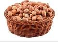 Gesalzen erdnüsse 200g X 2 stück (organische snacks, pflanzliche produkte, junk food, küche, party, vitamin, mineral, gluten-freies lebensmittel,
