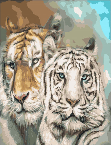Painting By Numbers GX 34530 Tigers 40*50