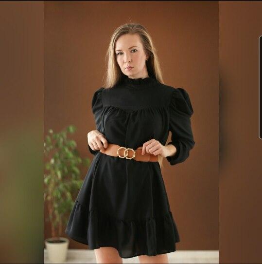 Hot 2019 autumn new fashion women's temperament commuter puff sleeve small high collar natural A word knee Chiffon dress reviews №6 342863