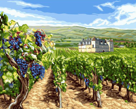 Painting By Numbers GX 32470 Grape Fields 40*50