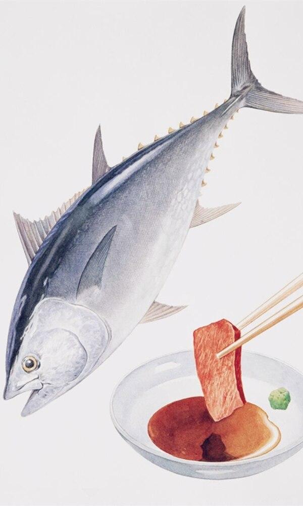 《金枪鱼》封面图片