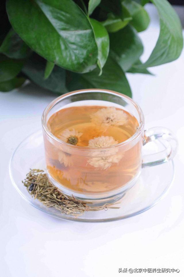 健康养生中药茶(五味消毒饮)