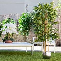 Plante artificielle, arbres généalogiques avec troncs naturels, pour la décoration de la maison, bambou, plante d'hévéa, glycine, Olive, eucalyptus, amande
