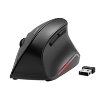 Havit mouse Ergonomico 수직 무선 광학 이미징 인형 mas You comfortable MS55GT