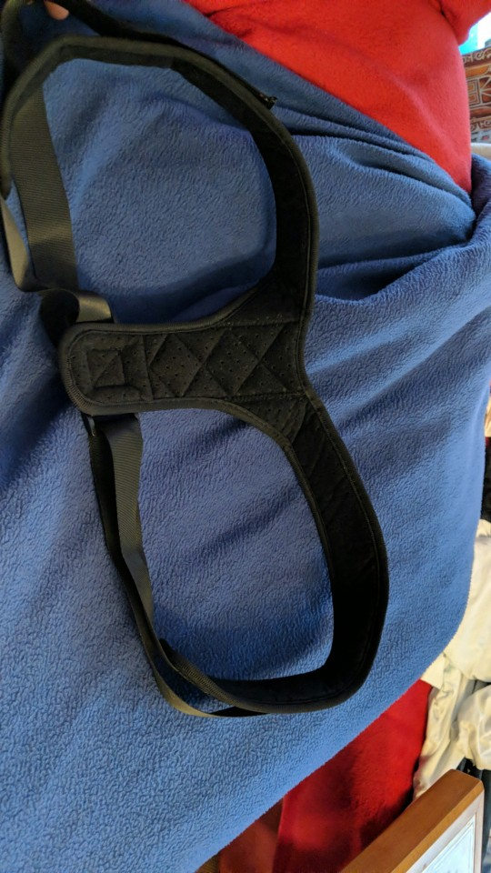 Adjustable Posture Correcting Support photo review